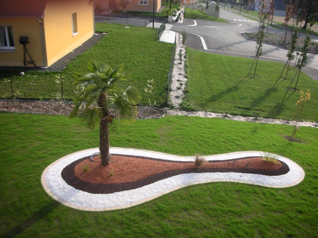 massif avec un palmier